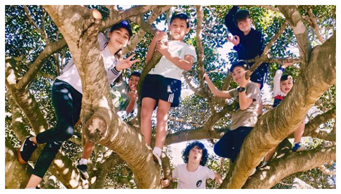 kids up on a tree